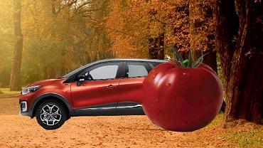 Renault НОРД-АВТО приглашает!
